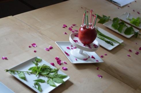 Geburtstag-feiern-kräuterwanderung