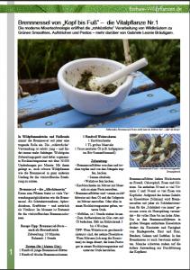 Magazin_essbare_Wildpflanzen