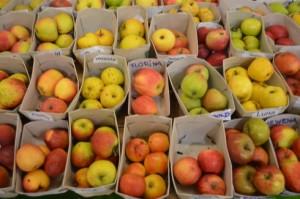 Regionale Apfelsortenvielfalt auf der Biodiva