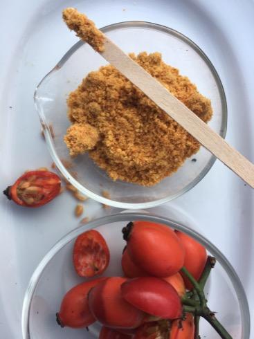 Eigene Zubereitung Hagebuttenpulver aus Hagebuttenkernchen und Hagebuttenfrüchten. Fertige Konsistenz in